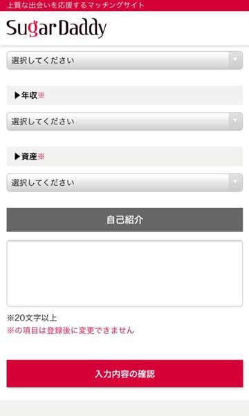 シュガーダディ会員登録[年収・資産・プロフィール]画面